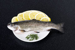 Fresh raw fish lying on a plate. Fresh raw fish lying on a plate with lemon's slices Stock Photography