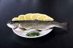 Fresh raw fish lying on a plate. Fresh raw fish lying on a plate with lemon's slices Stock Images