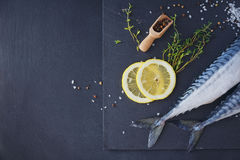 Fresh raw fish mackerel and ingredients for cooking on a dark ba Royalty Free Stock Photography