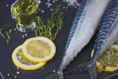 Fresh raw fish mackerel and ingredients for cooking on a dark ba Royalty Free Stock Photo