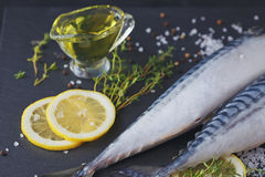 Fresh raw fish mackerel and ingredients for cooking on a dark ba Stock Photo