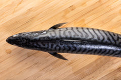 Fresh raw fish mackerel. On a wooden background Royalty Free Stock Photography