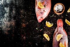 Fresh raw fish pink tilapia. With spices for cooking - lemon, salt, pepper, herbs, on  black rusty metal table, copy space top view Stock Photography
