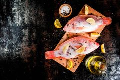 Fresh raw fish pink tilapia. With spices for cooking - lemon, salt, pepper, herbs, on  black rusty metal table, copy space top view Royalty Free Stock Photography