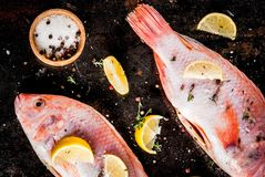 Fresh raw fish pink tilapia. With spices for cooking - lemon, salt, pepper, herbs, on  black rusty metal table, copy space top view Royalty Free Stock Photo