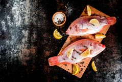 Fresh raw fish pink tilapia. With spices for cooking - lemon, salt, pepper, herbs, on  black rusty metal table, copy space top view Stock Photos