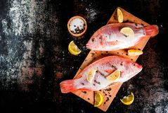 Fresh raw fish pink tilapia. With spices for cooking - lemon, salt, pepper, herbs, on  black rusty metal table, copy space top view Stock Photo