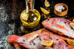 Fresh raw fish pink tilapia. With spices for cooking - lemon, salt, pepper, herbs, on  black rusty metal table, copy space Stock Images