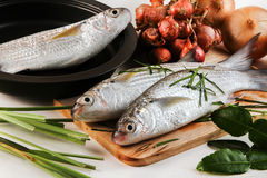 Fresh raw fish. Prepare for cook on chopping block Stock Photo