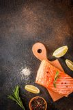 Fresh raw salmon steak fillet. Fresh raw fish salmon, steak fillet, with spices, lime, rosemary, salt, on a dark rusty background, copy space top view Stock Photos