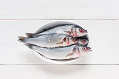 Fresh raw fish with salt on the white dish. On the white wooden table Stock Photography