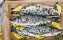 Fresh raw fish seabass. Is ready for baking with lemon, thyme, sea salt and pink pepper. Prepare a gourmet dinner. Selective focus Stock Image