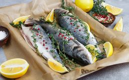 Fresh raw fish seabass. Is ready for baking with lemon, thyme, sea salt and pink pepper. Prepare a gourmet dinner. Selective focus Royalty Free Stock Photo