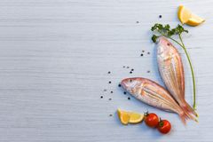 Fresh raw fish seafood with herbs and spices lemon parsley tomato pepper seed on white wood background royalty free stock photography