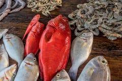 Fresh raw fish and seafood at market. Fresh raw sea fish and sea food market in Asia near fishermen village Stock Photo
