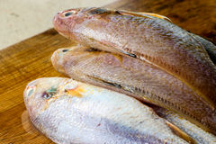 Fresh raw fish. Some fresh raw fish on the cutting board Royalty Free Stock Images