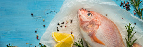 Fresh raw fish tilapia. Fresh raw fish tilapia and ingredients.  Top view. Food cooking background. Long format good for web Royalty Free Stock Photography