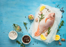 Fresh raw fish tilapia. Nile tiapia Oreochromis niloticus. Top view. Food cooking background Stock Images