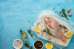 Fresh raw fish tilapia. Nile tiapia Oreochromis niloticus. Top view. Food cooking background Stock Photo