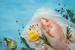 Fresh raw fish tilapia. Nile tiapia Oreochromis niloticus. Top view. Food cooking background Royalty Free Stock Images