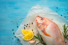 Fresh raw fish tilapia. Nile tiapia Oreochromis niloticus. Top view. Food cooking background Royalty Free Stock Image