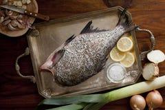 Fresh raw fish. On tray Royalty Free Stock Photos