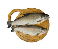 Fresh raw fish trout is two pieces on the board. For cutting food top view - isolated on white Royalty Free Stock Photos