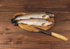 Fresh raw fish trout is two pieces on the board. For cutting food on a wooden table in rustic style near the knife Stock Photo