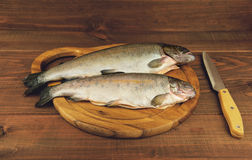 Fresh raw fish trout is two pieces on the board. For cutting food on a wooden table in rustic style near the knife Royalty Free Stock Images
