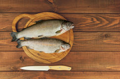 Fresh raw fish trout is two pieces on the board. Fresh raw fish trout is two pieces on board for cutting food on a wooden table in rustic style near the knife Royalty Free Stock Photo