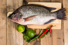 Fresh raw fish on the wood.  Stock Photos