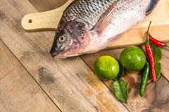Fresh raw fish on the wood.  Royalty Free Stock Photo