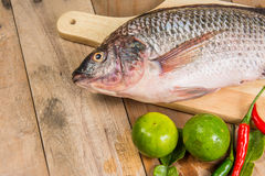 Fresh raw fish on the wood.  Stock Photography