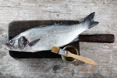 Fresh Raw Fish on Wood Board with Oil and Brush Stock Photography