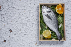 Fresh raw fish on wooden board. Background. From above Stock Image