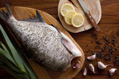 Fresh raw fish. On wooden cutting board Royalty Free Stock Image