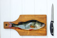 Fresh raw fish on wooden cutting board with knife. On white table Stock Photos