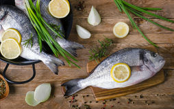 Fresh raw fishes with herbs, spices and vegetables on  a wooden. Table. Healthy eating concept. Top view Stock Photos