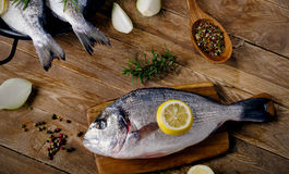 Fresh raw fishes. With herbs on wooden table. Healthy food concept Stock Images