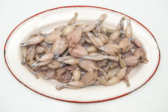 Fresh and raw frog legs ready to be cooked Stock Image