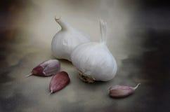 Fresh Raw Garlic Bulbs and Cloves Stock Image