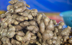Fresh Raw Ginger. From a market in malaysia, south east asia. Ungrated Stock Photo