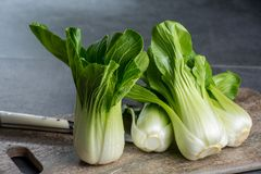Fresh raw baby Bok choy or pak choi Chinese cabbage. Fresh raw green baby Bok choy or pak choi Chinese cabbage Stock Photos