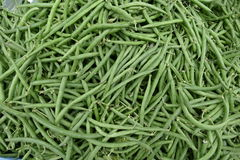 Fresh raw green beans at the market. Fresh raw green beans sold at the market Royalty Free Stock Photo
