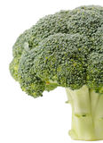 Fresh Raw Green Broccoli. On white Royalty Free Stock Images