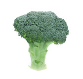 Fresh Raw Green Broccoli. On white background Stock Photos