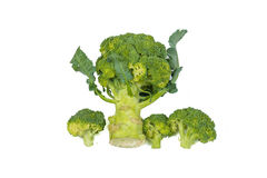 Fresh, Raw, Green Broccoli Pieces. Fresh, Raw, Green Broccoli Pieces, Cut and Ready to Eat Royalty Free Stock Photography