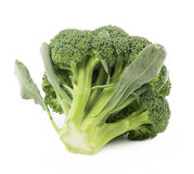 Fresh, Raw, Green Broccoli Pieces Stock Photos