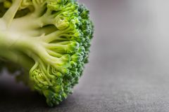 Fresh raw green broccoli. On a table. Diet healthy product Stock Photos