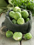 Fresh raw  green brussel sprouts Stock Photos